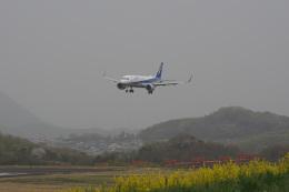 神宮寺ももさんが、高松空港で撮影した全日空 A320-271Nの航空フォト(飛行機 写真・画像)