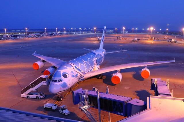 TAOTAOさんが、中部国際空港で撮影した全日空 A380-841の航空フォト(飛行機 写真・画像)