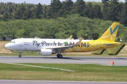 hiroki_h2さんが、成田国際空港で撮影したピーチ A320-214の航空フォト(飛行機 写真・画像)