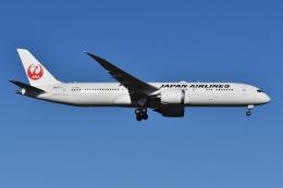 Deepさんが、成田国際空港で撮影した日本航空 787-9の航空フォト(飛行機 写真・画像)