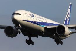 kan787allさんが、成田国際空港で撮影した全日空 777-381/ERの航空フォト(飛行機 写真・画像)