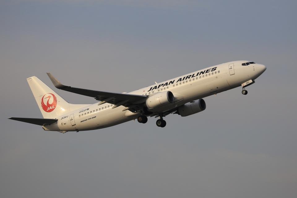 aki241012さんの日本航空 Boeing 737-800 (JA341J) 航空フォト