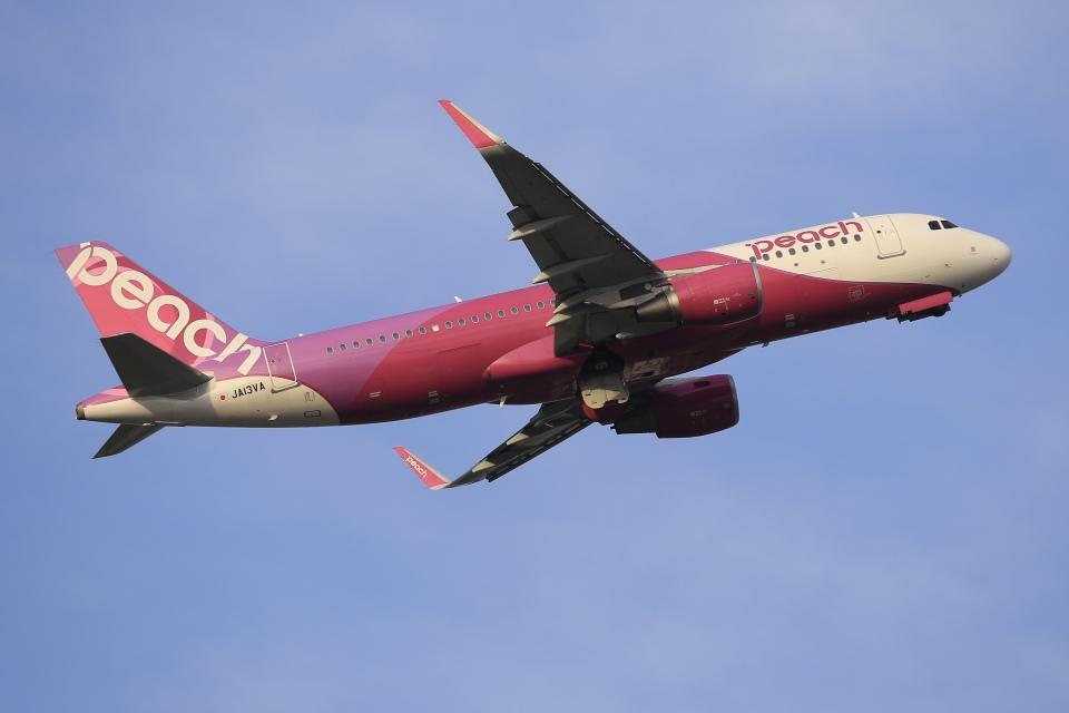 aki241012さんのピーチ Airbus A320 (JA13VA) 航空フォト