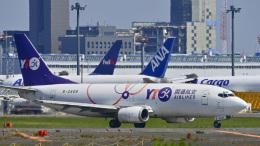 パンダさんが、成田国際空港で撮影したYTOカーゴ・エアラインズ 737-36Q(SF)の航空フォト(飛行機 写真・画像)