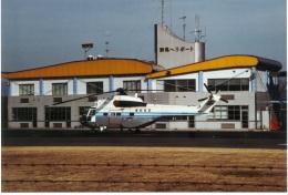 redarrowさんが、群馬ヘリポートで撮影した東邦航空の航空フォト(飛行機 写真・画像)
