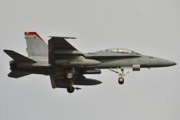 350JMさんが、厚木飛行場で撮影したアメリカ海兵隊 F/A-18D Hornetの航空フォト(飛行機 写真・画像)