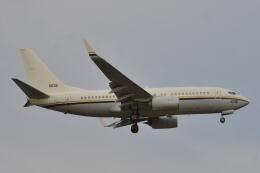 350JMさんが、厚木飛行場で撮影したアメリカ海軍 C-40A Clipper (737-7AFC)の航空フォト(飛行機 写真・画像)