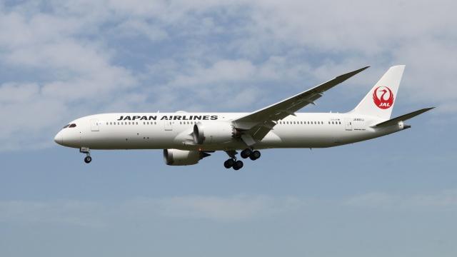 raichanさんが、成田国際空港で撮影した日本航空 787-9の航空フォト(飛行機 写真・画像)