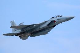 Kanarinaさんが、築城基地で撮影した航空自衛隊 F-15DJ Eagleの航空フォト(飛行機 写真・画像)
