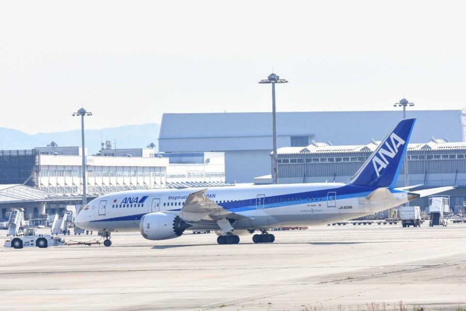 M.Tさんの全日空 Boeing 787-8 Dreamliner (JA808A) 航空フォト