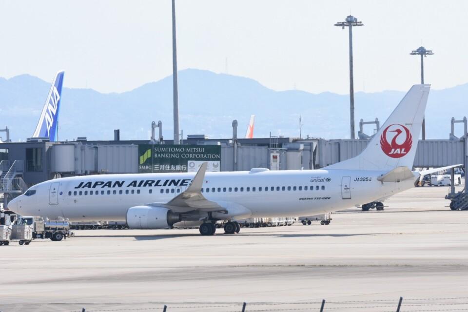 M.Tさんの日本航空 Boeing 737-800 (JA325J) 航空フォト