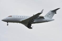 デルタおA330さんが、横田基地で撮影した連邦航空局 CL-600-2B16 Challenger 605の航空フォト(飛行機 写真・画像)