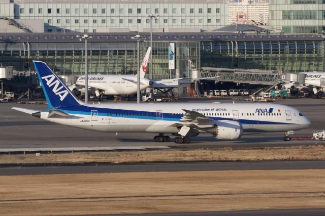 344さんが、羽田空港で撮影した全日空 787-9の航空フォト(飛行機 写真・画像)