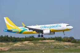 アルビレオさんが、成田国際空港で撮影したセブパシフィック航空 A320-271Nの航空フォト(飛行機 写真・画像)