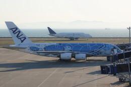 JUTENさんが、中部国際空港で撮影した全日空 A380-841の航空フォト(飛行機 写真・画像)