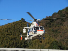 チダ.ニックさんが、静岡ヘリポートで撮影したオールニッポンヘリコプター AS365N3 Dauphin 2の航空フォト(飛行機 写真・画像)