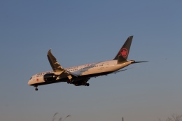 344さんが、成田国際空港で撮影したエア・カナダ 787-9の航空フォト(飛行機 写真・画像)