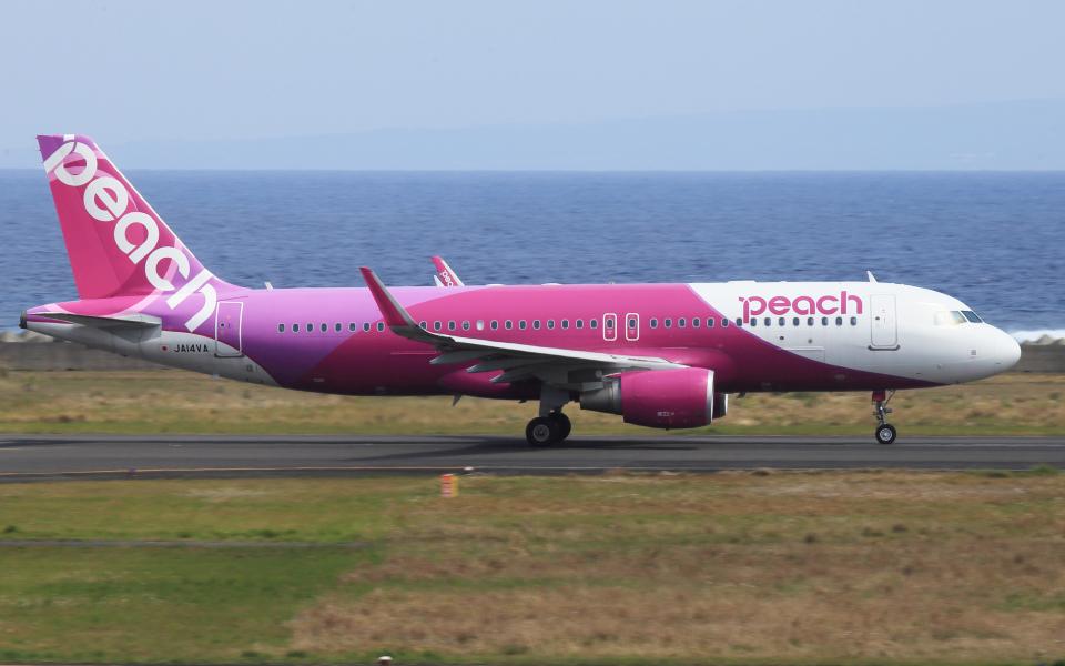 CL&CLさんのピーチ Airbus A320 (JA14VA) 航空フォト