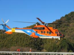チダ.ニックさんが、静岡ヘリポートで撮影した新日本ヘリコプター AS332L1 Super Pumaの航空フォト(飛行機 写真・画像)