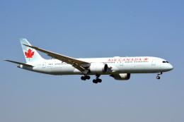 アルビレオさんが、成田国際空港で撮影したエア・カナダ 787-9の航空フォト(飛行機 写真・画像)