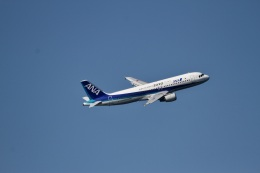 344さんが、羽田空港で撮影した全日空 A320-211の航空フォト(飛行機 写真・画像)