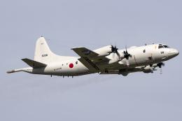 Flankerさんが、厚木飛行場で撮影した海上自衛隊 P-3Cの航空フォト(飛行機 写真・画像)