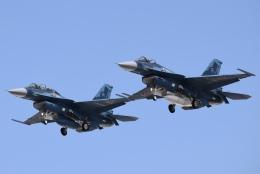 SYさんが、岐阜基地で撮影した航空自衛隊 F-2Bの航空フォト(飛行機 写真・画像)