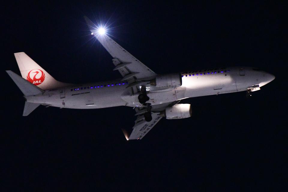 TOPAZ102さんの日本航空 Boeing 737-800 (JA323J) 航空フォト