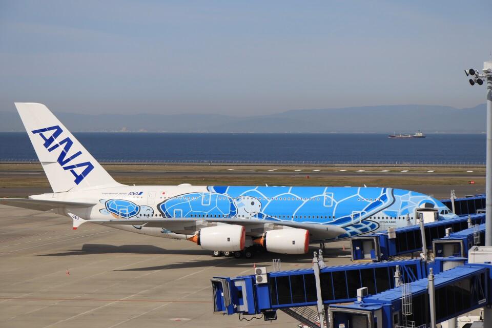 ゆなりあさんの全日空 Airbus A380 (JA381A) 航空フォト