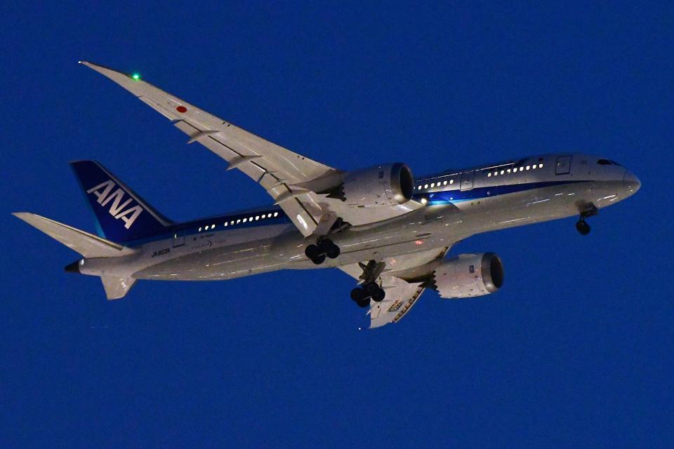 TOPAZ102さんの全日空 Boeing 787-8 Dreamliner (JA803A) 航空フォト