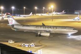 mameshibaさんが、中部国際空港で撮影したエティハド航空 A330-243の航空フォト(飛行機 写真・画像)