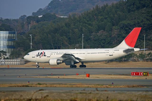 tsubameさんが、福岡空港で撮影した日本航空 A300B4-622Rの航空フォト(飛行機 写真・画像)