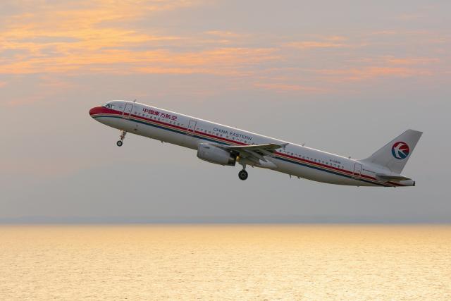 mameshibaさんが、中部国際空港で撮影した中国東方航空 A321-231の航空フォト(飛行機 写真・画像)