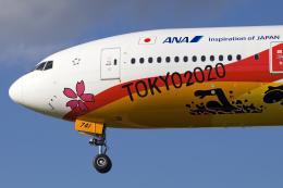 chrisshoさんが、伊丹空港で撮影した全日空 777-281/ERの航空フォト(飛行機 写真・画像)