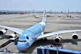 MSN/PFさんが、中部国際空港で撮影した全日空 A380-841の航空フォト(飛行機 写真・画像)