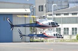ヘリオスさんが、東京ヘリポートで撮影したノエビア AS350B3 Ecureuilの航空フォト(飛行機 写真・画像)