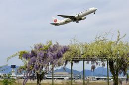くれないさんが、高松空港で撮影した日本航空 767-346/ERの航空フォト(飛行機 写真・画像)
