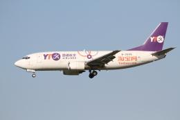 ベリックさんが、成田国際空港で撮影したYTOカーゴ・エアラインズ 737-36Q(SF)の航空フォト(飛行機 写真・画像)