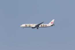 ベリックさんが、成田国際空港で撮影した日本航空 787-9の航空フォト(飛行機 写真・画像)
