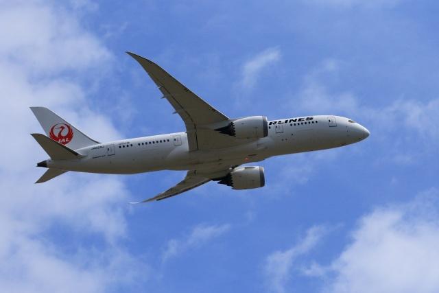 おっしーさんが、成田国際空港で撮影した日本航空 787-8 Dreamlinerの航空フォト(飛行機 写真・画像)