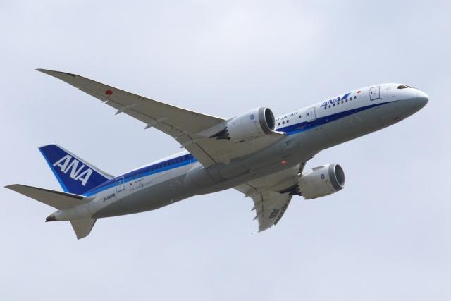 おっしーさんが、成田国際空港で撮影した全日空 787-8 Dreamlinerの航空フォト(飛行機 写真・画像)
