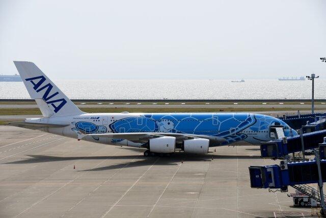 こみけさんが、中部国際空港で撮影した全日空 A380-841の航空フォト(飛行機 写真・画像)