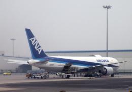 チャーリーマイクさんが、青島流亭国際空港で撮影した全日空 767-381F/ERの航空フォト(飛行機 写真・画像)