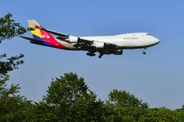 パンダさんが、成田国際空港で撮影したアシアナ航空 747-48EF/SCDの航空フォト(飛行機 写真・画像)