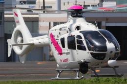 きりしまさんが、東京ヘリポートで撮影した東邦航空 EC135T2の航空フォト(飛行機 写真・画像)