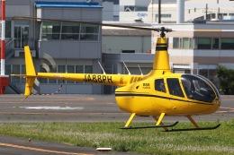 きりしまさんが、東京ヘリポートで撮影した日本法人所有 R66 Turbineの航空フォト(飛行機 写真・画像)