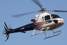 きりしまさんが、浦安ヘリポートで撮影したノエビア AS350B3 Ecureuilの航空フォト(飛行機 写真・画像)