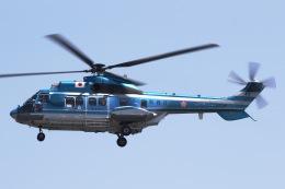 きりしまさんが、東京ヘリポートで撮影した警視庁 AS332L1 Super Pumaの航空フォト(飛行機 写真・画像)