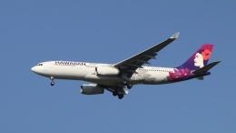 raichanさんが、成田国際空港で撮影したハワイアン航空 A330-243の航空フォト(飛行機 写真・画像)