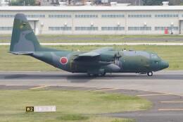 土岐のjunkoさんが、名古屋飛行場で撮影した航空自衛隊 C-130H Herculesの航空フォト(飛行機 写真・画像)